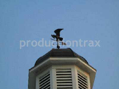 Cupola With Weather Vane