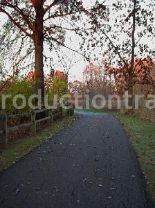 Woods And Meadow In Autumn